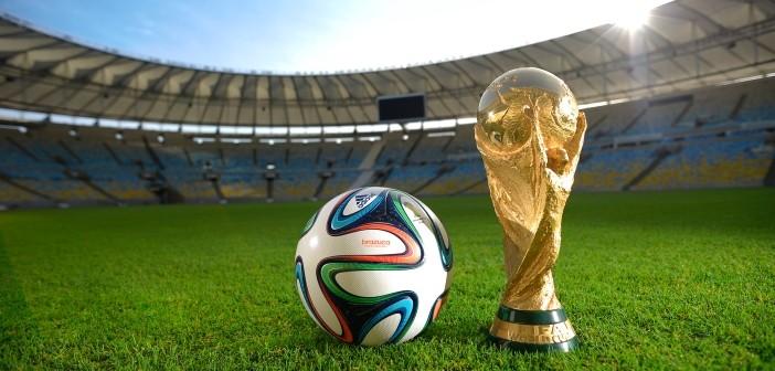 FIFA sponsors Brazil 2014